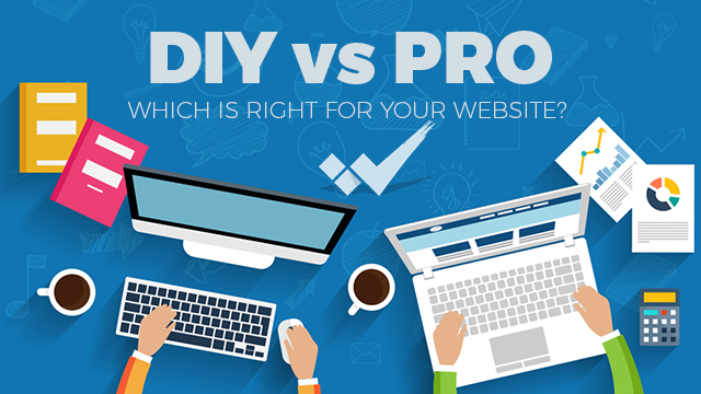 DIY vs PRO Which is Right for Your Website